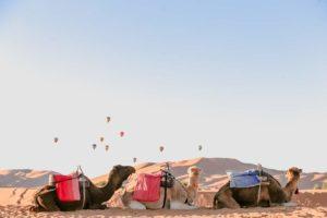 Marrakech to Zagora 2 days 1 night desert tour